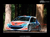 Peugeot 207 Rally screenshot by Tikko_20